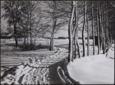 Bei Tuschin : Winterlandschaft