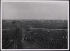 Gräberberg 1916. 6, (Der Weg zum Hochkreuz)