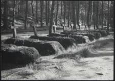 Heldengräber in Pabianice