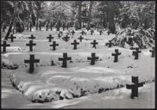 Kriegerfriedhof im Walde bei Zgierz
