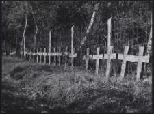 Kriegerfriedhof im Wiontschiner Wald