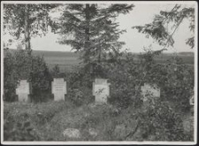 Kriegerfriedhof in Boginia bei Lodz