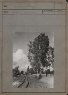 Landschaft bei Litzmannstadt