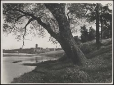 Litzmannstadt : Teich b. d. Scheiblerwerken