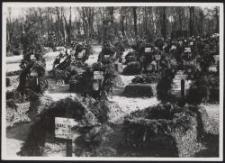 Litzmannstadt, Soldatengräber in Doly