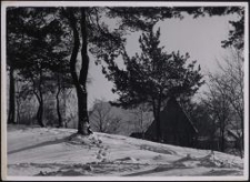 Piaskowa Góra : Winterlandschaft