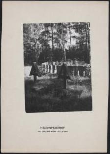 Soldatenfriedhof Witkowice = Heldenfriedhof im Walde von Galkow